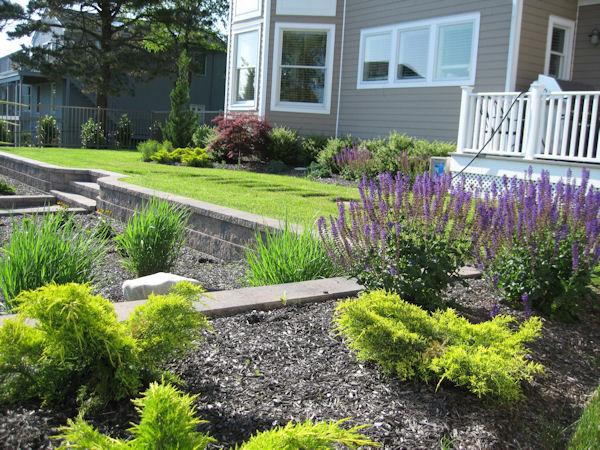 Huge landscape home landscaping designs long island school for Garden designs for schools